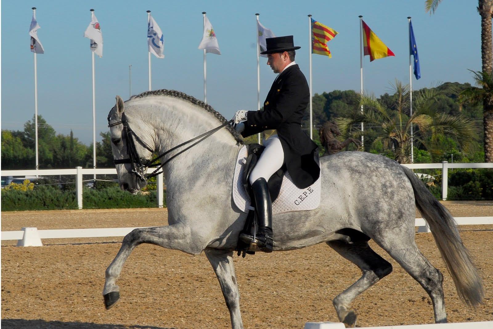 d833b2b8 Es cierto que todos los que montamos caballo, sobre todo los que pasamos  más horas arriba de un equino estamos tan acostumbrados al uso de las botas  que ...