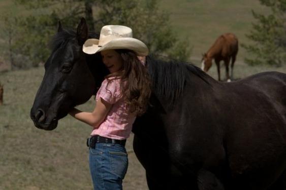 caballo-Flicka