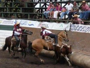 rodeo chileno