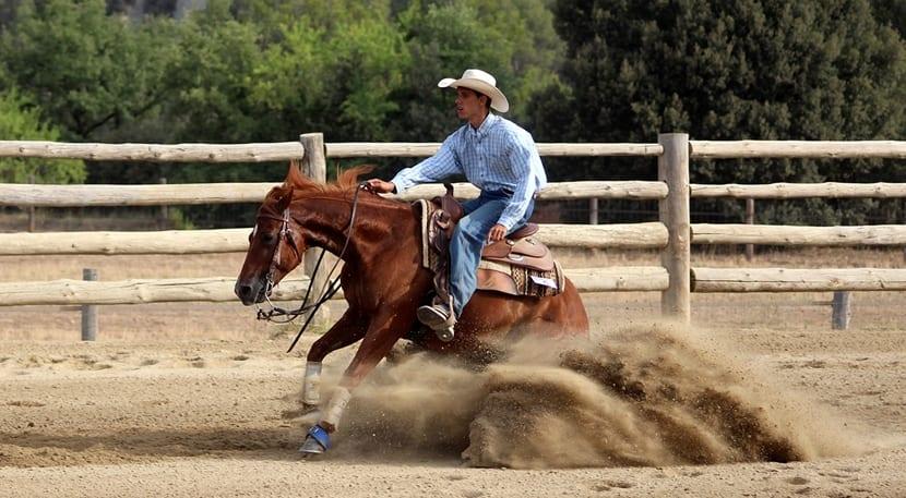 western-
