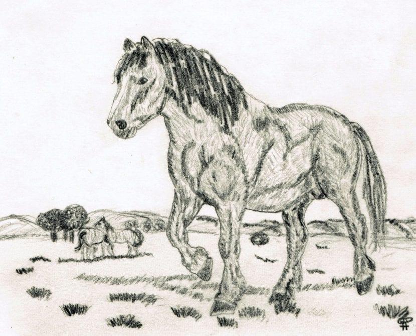 Dibujo de un caballo realista