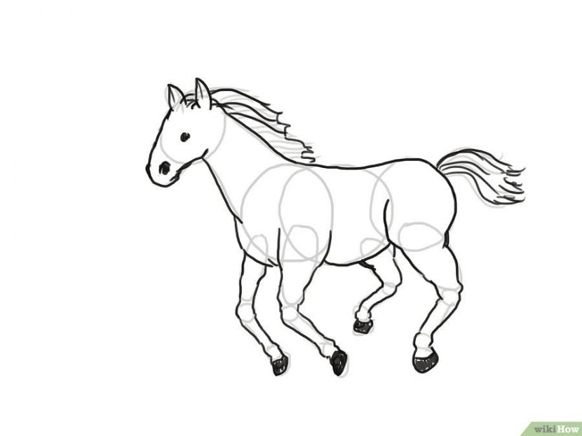 Dibujando un caballo realista