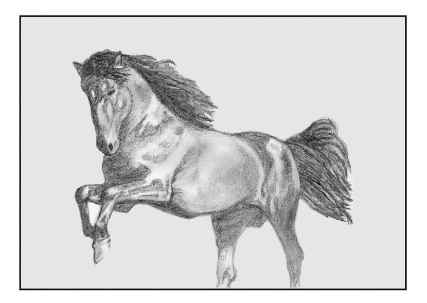 Cómo dibujar un caballo de forma sencilla