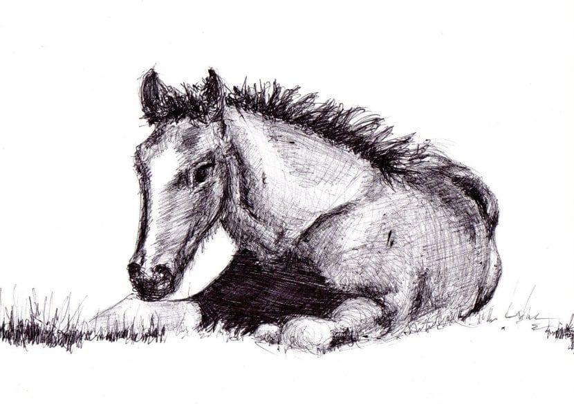 Dibujo de un caballo tumbado