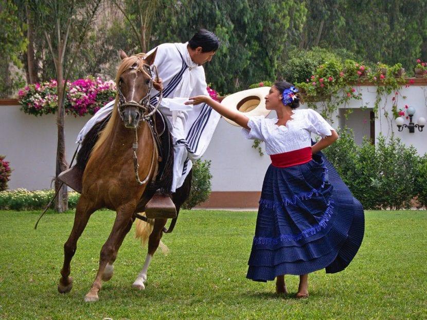Cómo se entrenan los caballos bailadores?