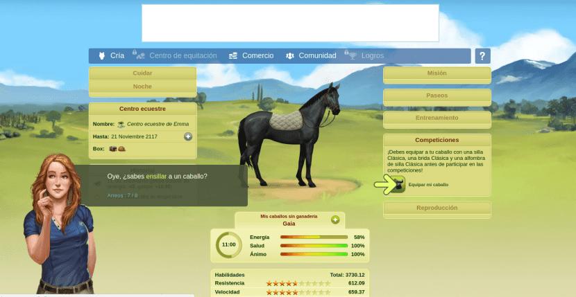 Equipa a tu caballo en Caballow