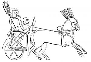 Dibujo de un caballo del Antiguo Egipto para colorear