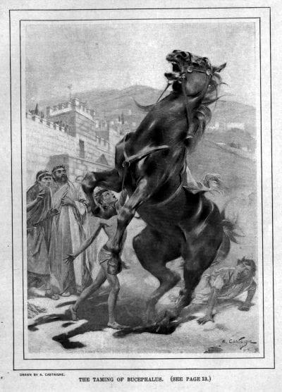 Imagen del caballo de Alejandro Magno, Bucéfalo
