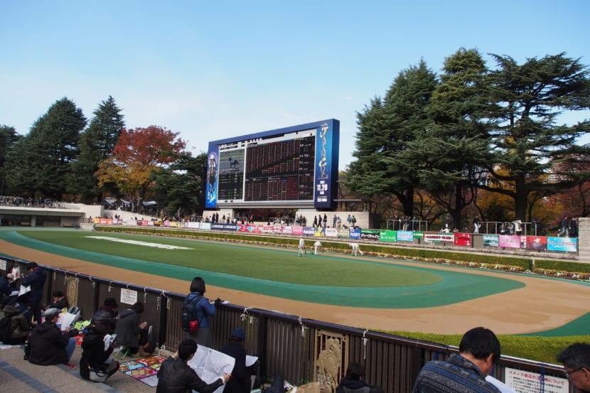 Vista del hipódromo de la Japan Cup