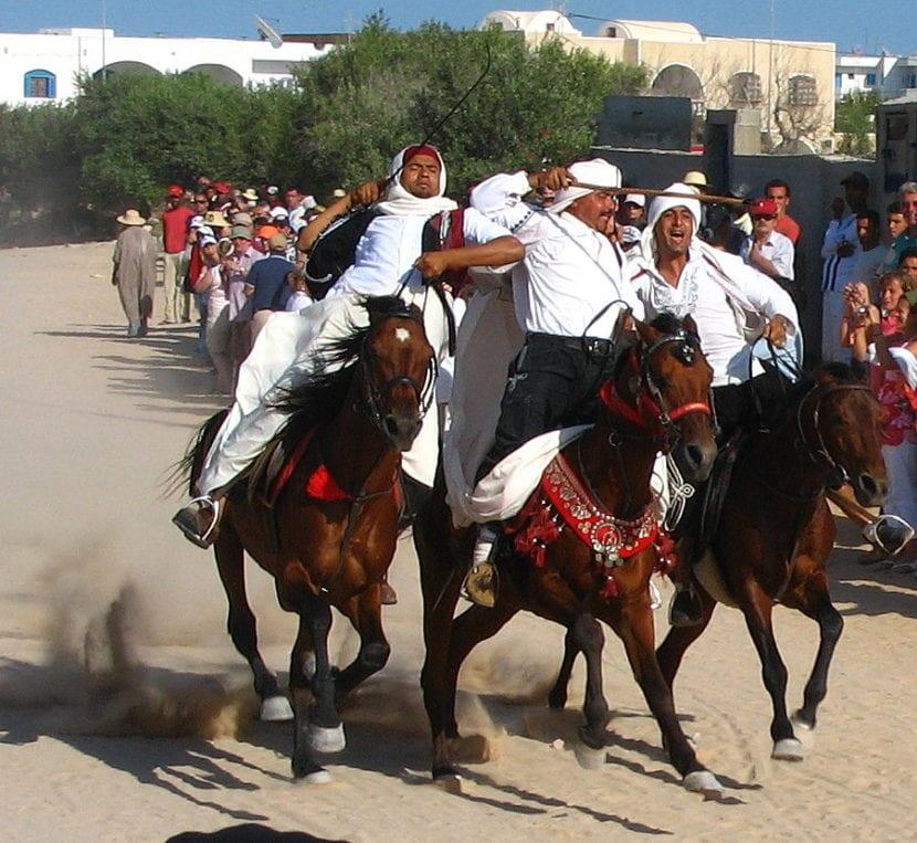caballo bereber