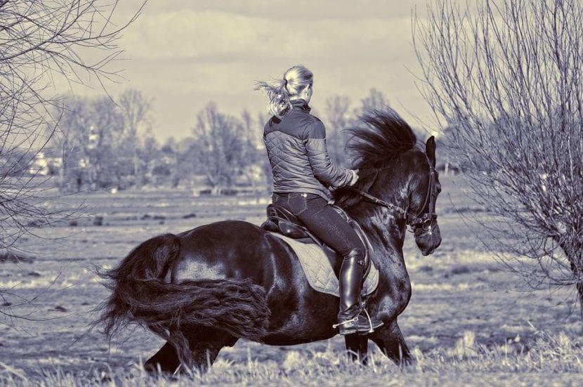 lesiones típicas al montar a caballo