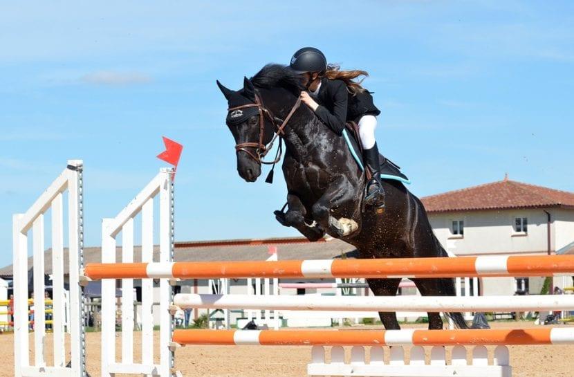 Concurso_saltos